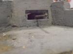 Cipressina-Venezia 2013_20